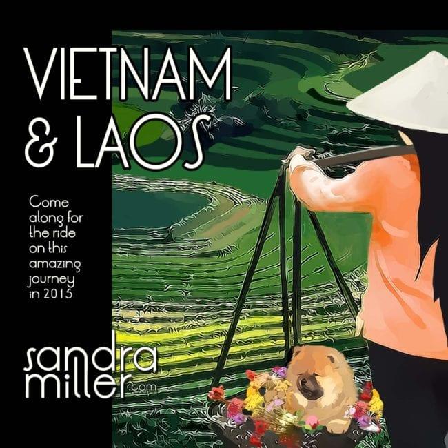 Armchair Tourists Join Us - 2015 journey to Vietnam and Laos - SANDRA MILLER STUDIO